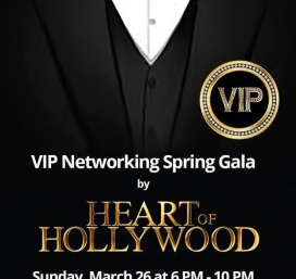VIP Networking Spring Gala