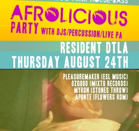 Afrolicious Party ft DJs Pleasuremaker Ozgood Myron  Live Percussionist Aponte